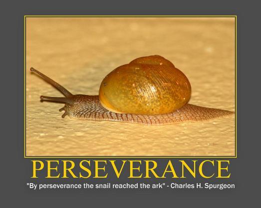 Perseverance-1
